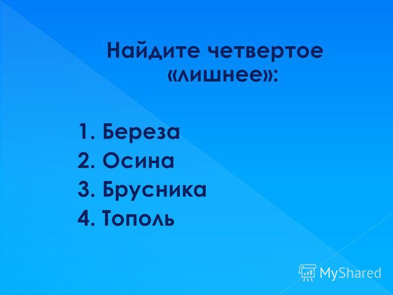 Найдите четвертое «лишнее»: 1. Береза 2. Осина 3. Брусника 4. Тополь