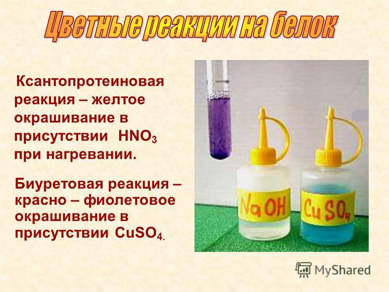 Ксантопротеиновая реакция – желтое окрашивание в присутствии НNO 3 при нагревании. Биуретовая реакция – красно – фиолетовое окрашивание в присутствии CuSO 4.