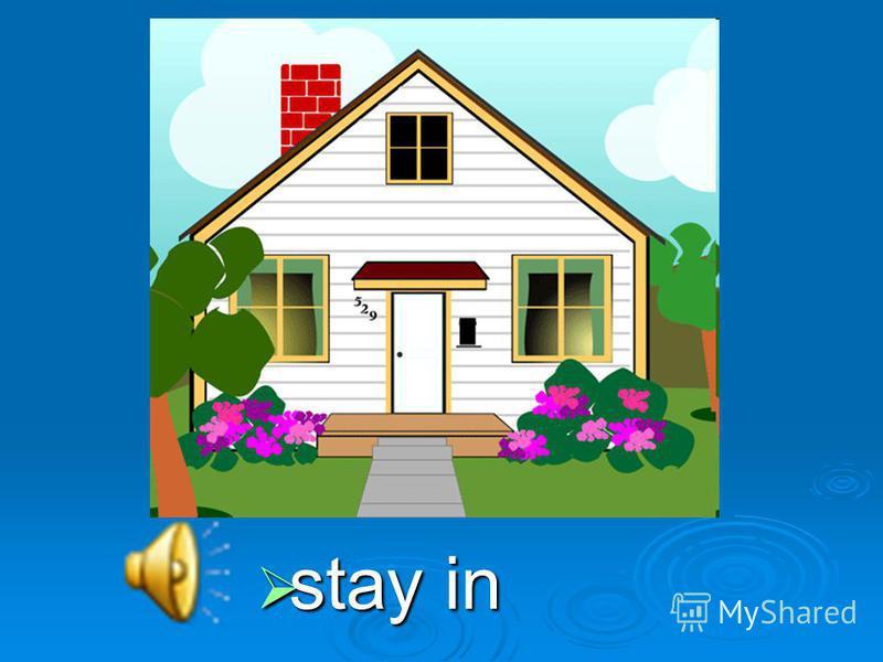 stay in stay in