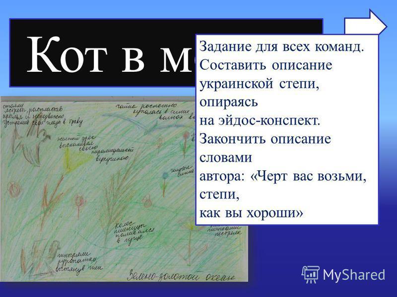Кот в мешке Задание для всех команд. Составить описание украинской степи, опираясь на эйдос-конспект. Закончить описание словами автора: «Черт вас возьми, степи, как вы хороши»