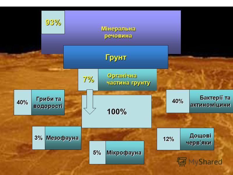 Мінеральна Мінеральна речовина речовина Органічна Органічна частина грунту частина грунту 7% 93% Грунт Гриби та Гриби та водорості водорості Бактерії та актиноміцини актиноміцини40%40% Мезофауна Мікрофауна Дощові червяки 3% 12% 5% 100%