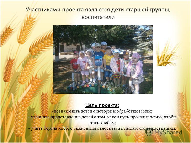 Цель проекта: -познакомить детей с историей обработки земли; - уточнить представление детей о том, какой путь проходит зерно, чтобы стать хлебом; - учить беречь хлеб, с уважением относиться к людям его вырастившим. Участниками проекта являются дети с