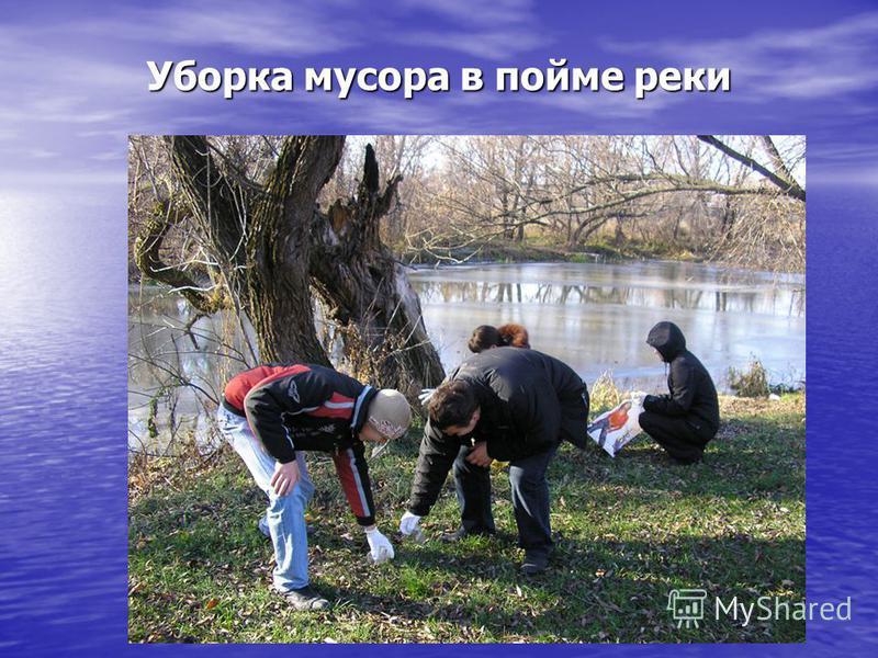 Уборка мусора в пойме реки