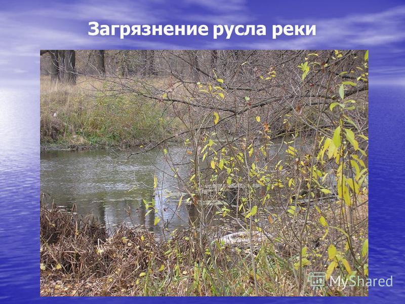 Загрязнение русла реки
