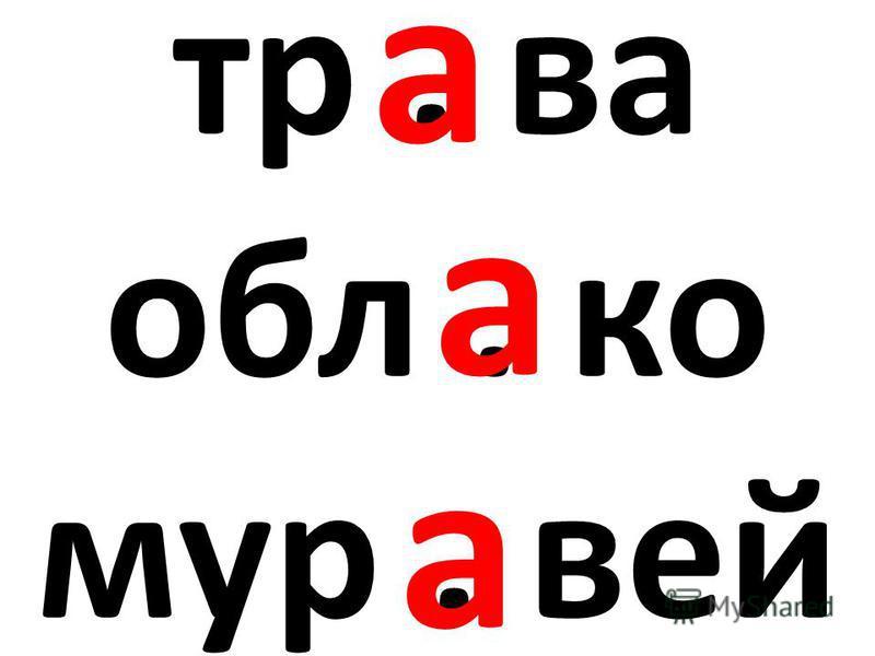 тр. ва обл. ко мур. вей а а а