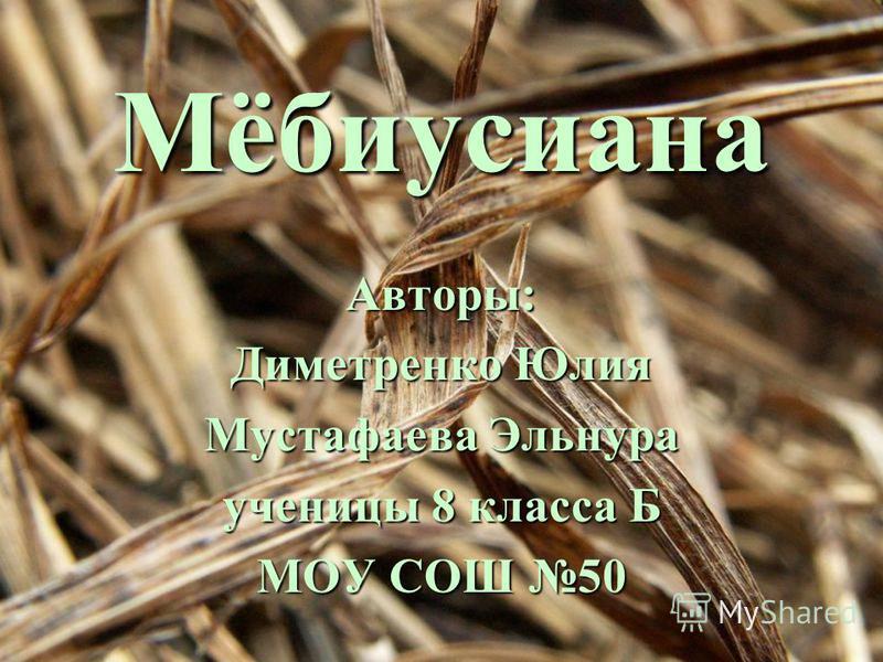 Мёбиусиана Авторы: Диметренко Юлия Мустафаева Эльнура ученицы 8 класса Б МОУ СОШ 50