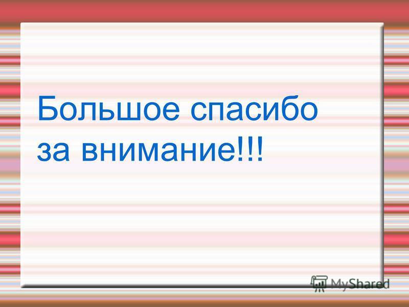 Большое спасибо за внимание!!!