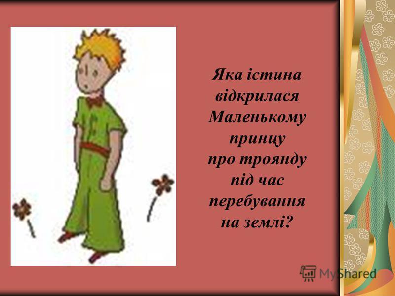 Яка істина відкрилася Маленькому принцу про троянду під час перебування на землі?