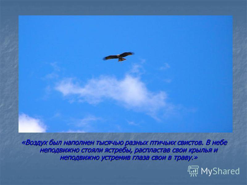 «Воздух был наполнен тысячью разных птичьих свистов. В небе неподвижно стояли ястребы, распластав свои крылья и неподвижно устремив глаза свои в траву.»