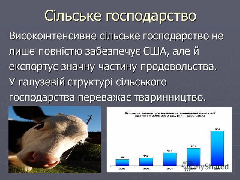 Сільське господарство Високоінтенсивне сільське господарство не лише повністю забезпечує США, але й експортує значну частину продовольства. У галузевій структурі сільського господарства переважає тваринництво.