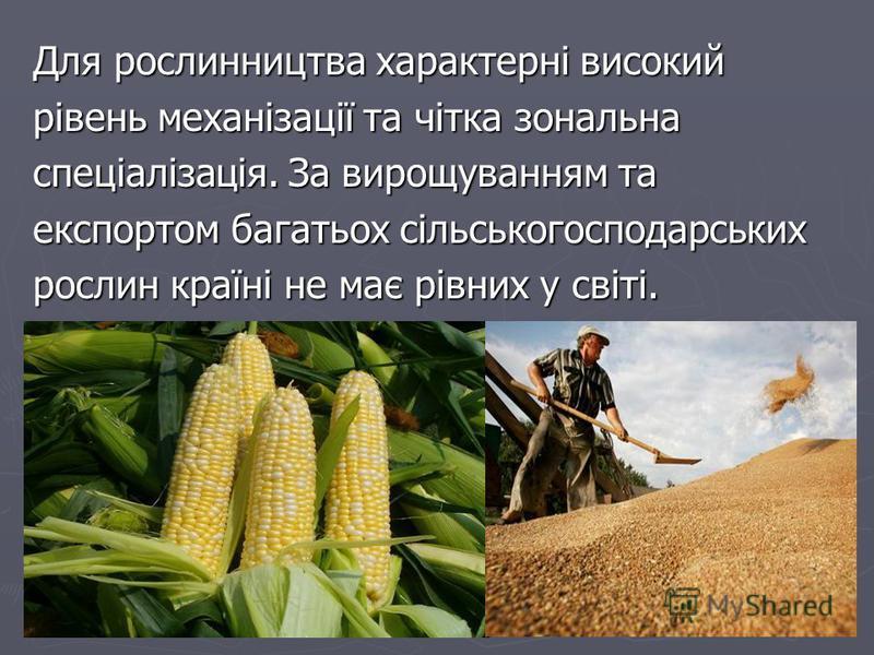 Для рослинництва характерні високий рівень механізації та чітка зональна спеціалізація. За вирощуванням та експортом багатьох сільськогосподарських рослин країні не має рівних у світі.