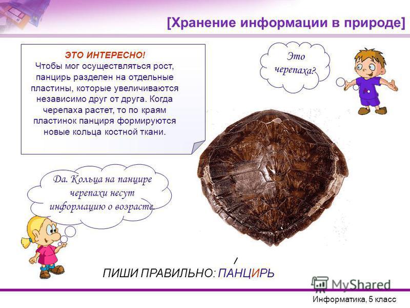 Да. Кольца на панцире черепахи несут информацию о возрасте. Это черепаха? Информатика, 5 класс ПИШИ ПРАВИЛЬНО: ПАНЦИРЬ ЭТО ИНТЕРЕСНО! Чтобы мог осуществляться рост, панцирь разделен на отдельные пластины, которые увеличиваются независимо друг от друг