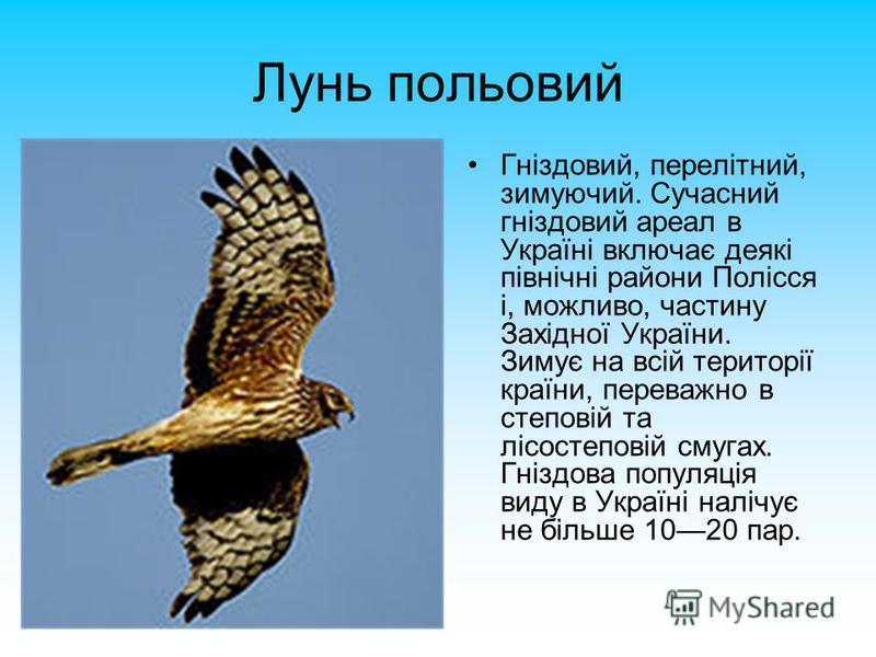 Лунь польовий Гніздовий, перелітний, зимуючий. Сучасний гніздовий ареал в Україні включає деякі північні райони Полісся і, можливо, частину Західної України. Зимує на всій території країни, переважно в степовій та лісостеповій смугах. Гніздова популя