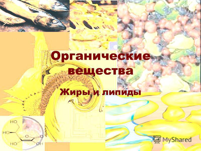 Органические вещества Жиры и липиды