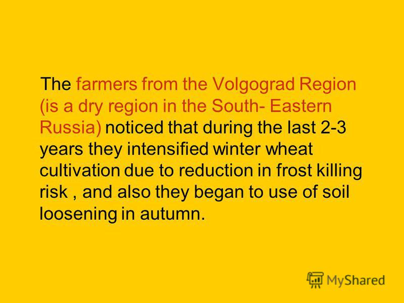 The farmers from the Volgograd Region (is a dry region in the South- Eastern Russia) noticed that during the last 2-3 years they intensified winter wheat cultivation due to reduction in frost killing risk, and also they began to use of soil loosening