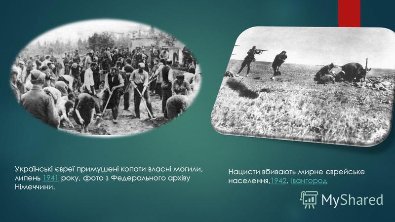 Нацисти вбивають мирне єврейське населення,1942, Івангород1942Івангород Українські євреї примушені копати власні могили, липень 1941 року, фото з Федерального архіву Німеччини.1941