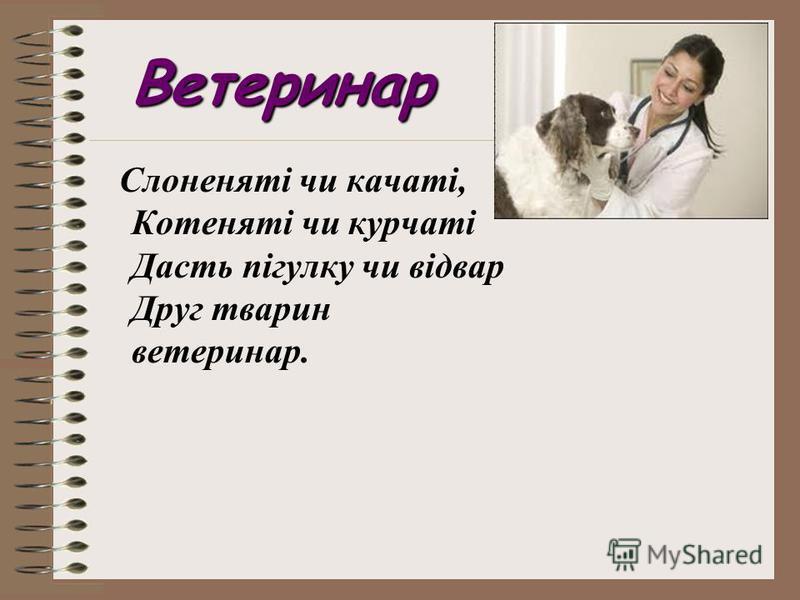 Ветеринар Слоненяті чи качаті, Котеняті чи курчаті Дасть пігулку чи відвар Друг тварин ветеринар.