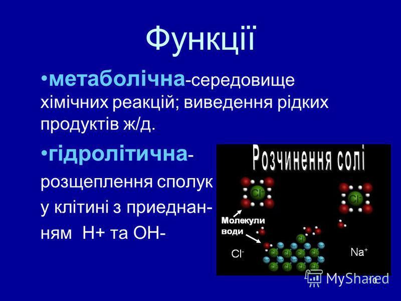 10 Функції метаболічна -середовище хімічних реакцій; виведення рідких продуктів ж/д. гідролітична - розщеплення сполук у клітині з приеднан- ням Н+ та ОН-