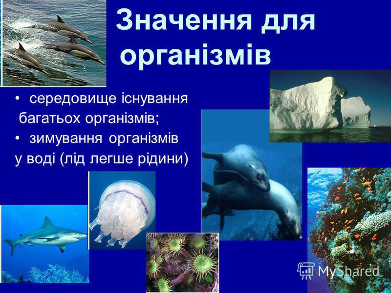 14 Значення для організмів середовище існування багатьох організмів; зимування організмів у воді (лід легше рідини)