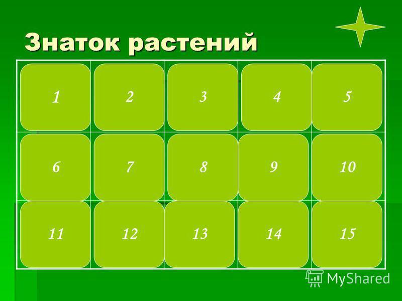 Знаток растений 1 10 2345 131415 7 1112 896
