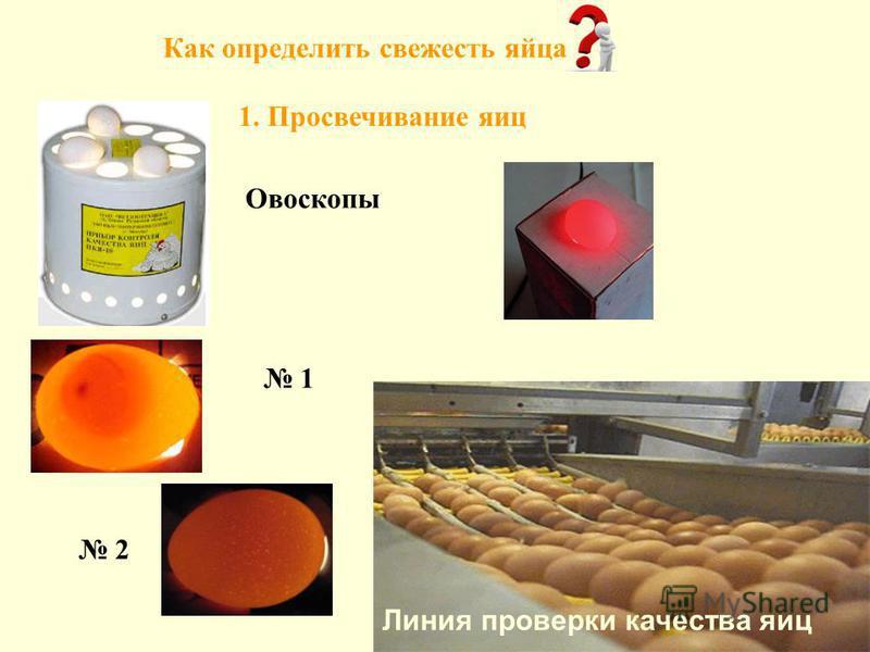 Овоскопы Линия проверки качества яиц Как определить свежесть яйца 1. Просвечивание яиц 1 2