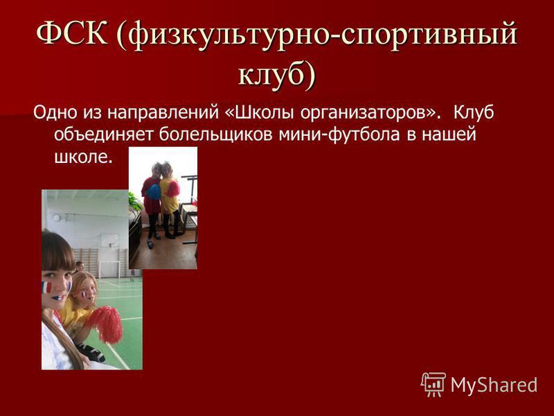 ФСК (физкультурно-спортивный клуб) Одно из направлений «Школы организаторов». Клуб объединяет болельщиков мини-футбола в нашей школе.