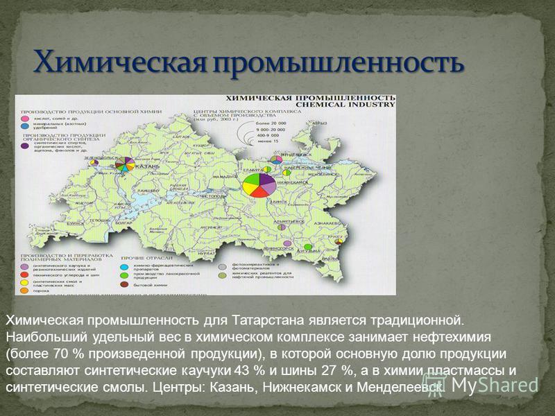 Химическая промышленность для Татарстана является традиционной. Наибольший удельный вес в химическом комплексе занимает нефтихимия (более 70 % произведенной продукции), в которой основную долю продукции составляют синтетические каучуки 43 % и шины 27