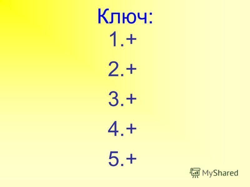 Ключ: 1.+ 2.+ 3.+ 4.+ 5.+