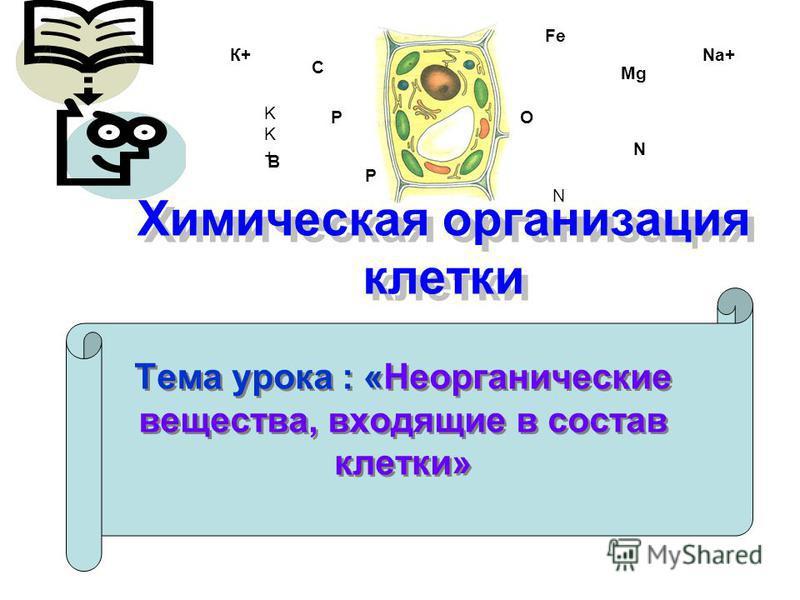 Химическая организация клетки Тема урока : «Неорганические вещества, входящие в состав клетки» Fe O C P P N N B Mg KK+KK+ К+Na+