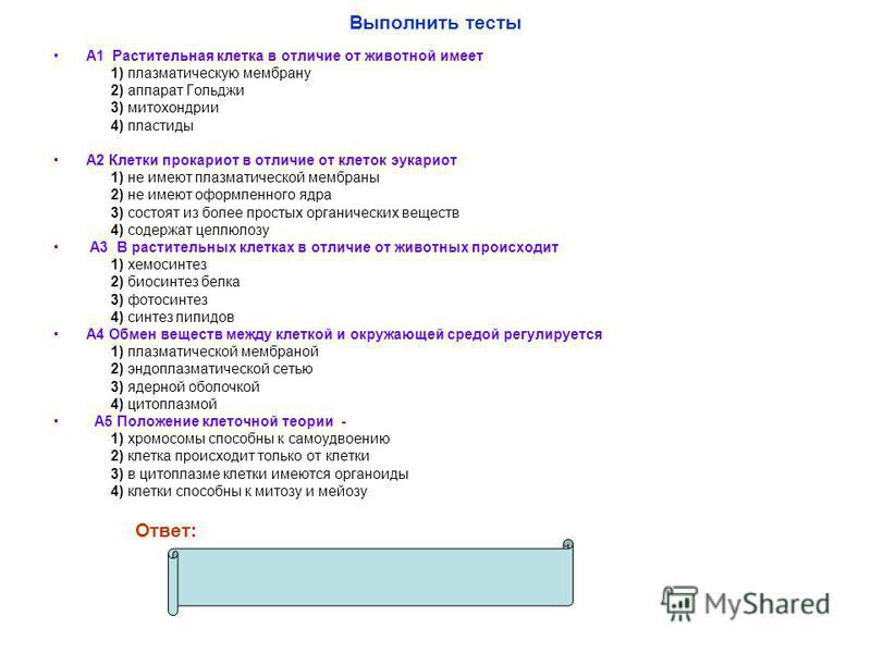 Выполнить тесты А1 Растительная клетка в отличие от животной имеет 1) плазматическую мембрану 2) аппарат Гольджи 3) митохондрии 4) пластиды А2 Клетки прокариот в отличие от клеток эукариот 1) не имеют плазматической мембраны 2) не имеют оформленного