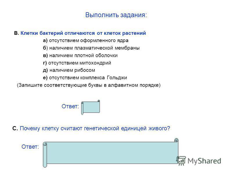Выполнить задания: В. Клетки бактерий отличаются от клеток растений а) отсутствием оформленного ядра б) наличием плазматической мембраны в) наличием плотной оболочки г) отсутствием митохондрий д) наличием рибосом е) отсутствием комплекса Гольджи (Зап