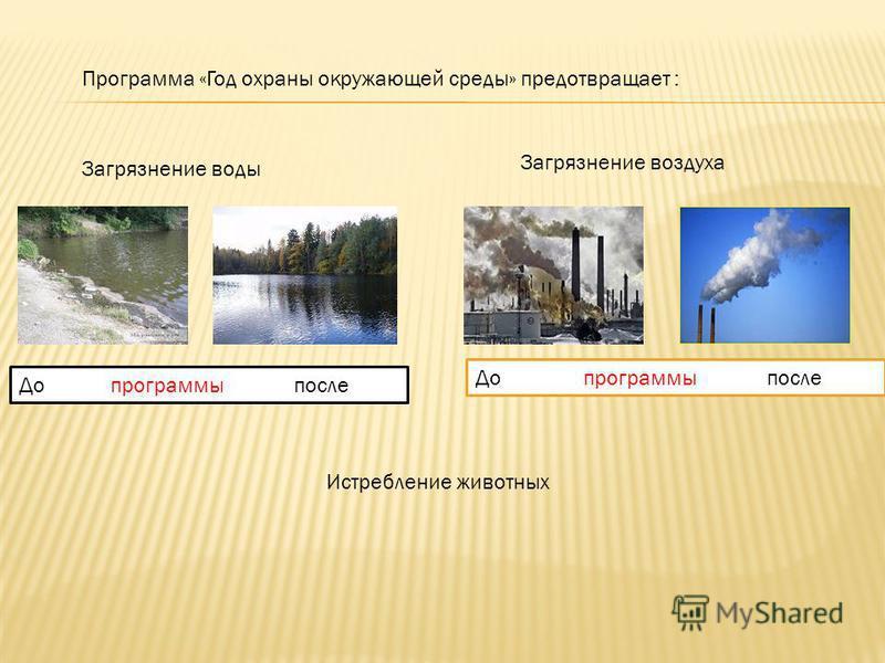 Программа «Год охраны окружающей среды» предотвращает : Загрязнение воды Загрязнение воздуха Истребление животных До программы после