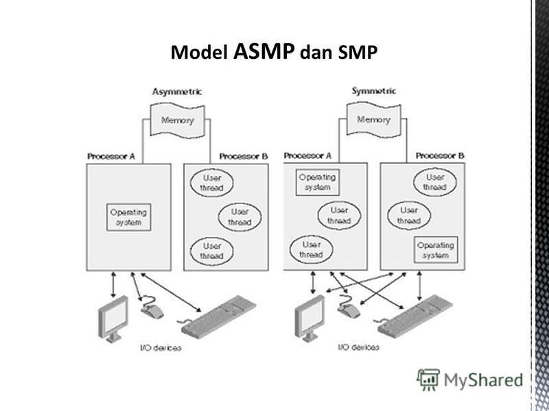 Model ASMP dan SMP