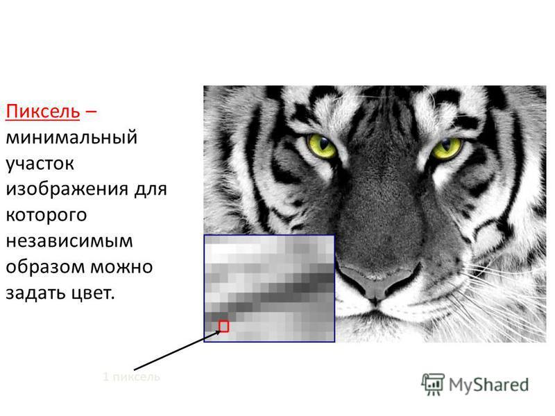 Пиксель – минимальный участок изображения для которого независимым образом можно задать цвет. 1 пиксель