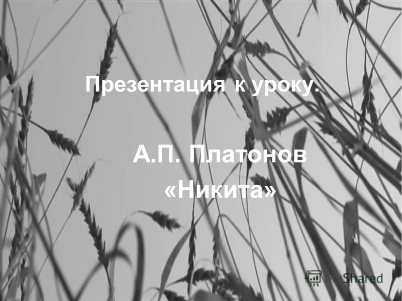 Презентация к уроку. А.П. Платонов «Никита»