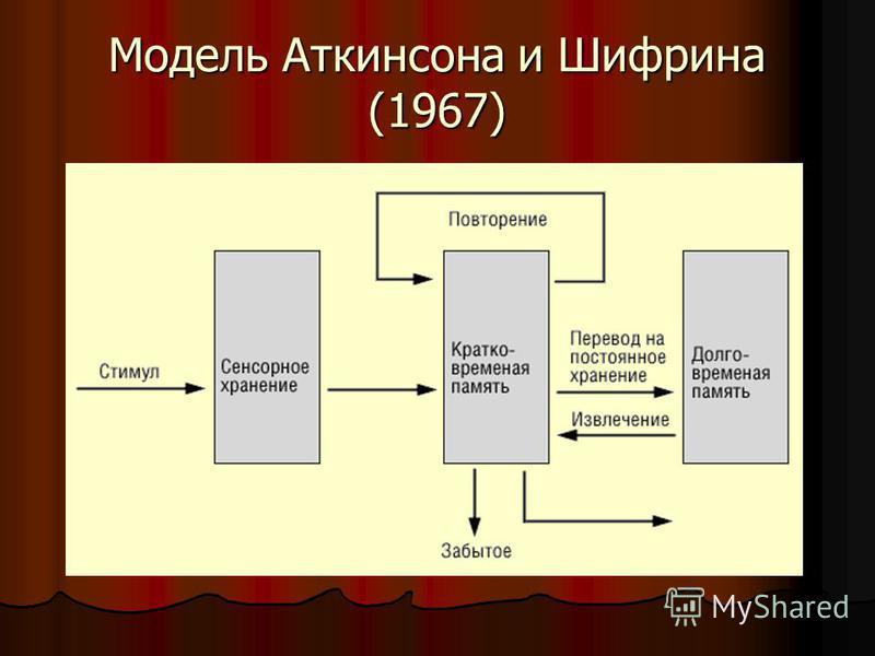 Модель Аткинсона и Шифрина (1967)