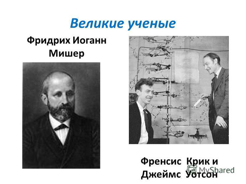 Великие ученые Фридрих Иоганн Мишер Френсис Крик и Джеймс Уотсон