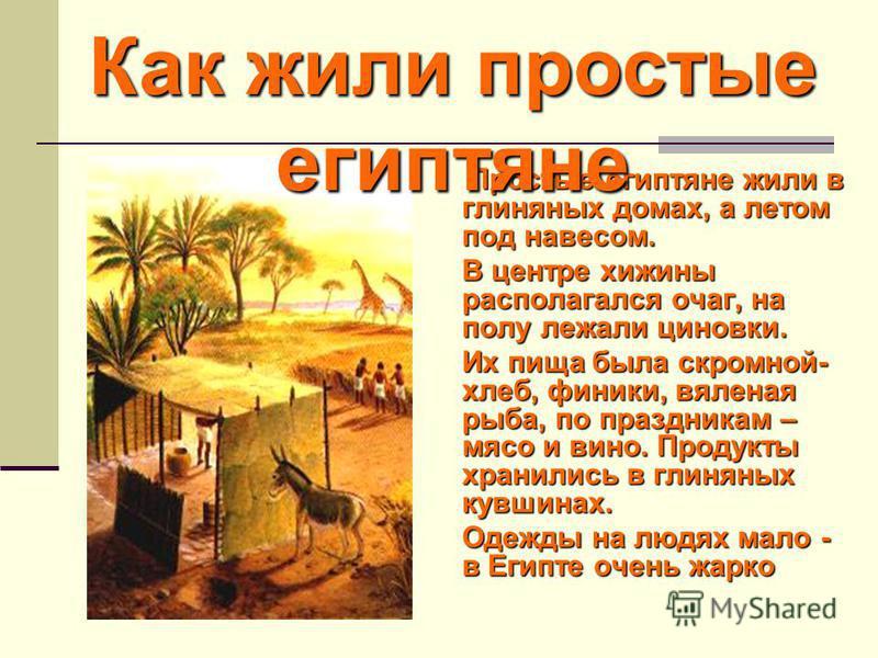 Простые египтяне жили в глиняных домах, а летом под навесом. В центре хижины располагался очаг, на полу лежали циновки. Их пища была скромной- хлеб, финики, вяленая рыба, по праздникам – мясо и вино. Продукты хранились в глиняных кувшинах. Одежды на