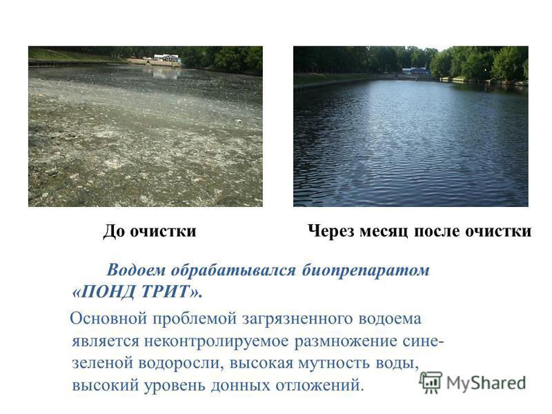 Водоем обрабатывался биопрепаратом «ПОНД ТРИТ». Основной проблемой загрязненного водоема является неконтролируемое размножение сине- зеленой водоросли, высокая мутность воды, высокий уровень донных отложений. До очистки Через месяц после очистки