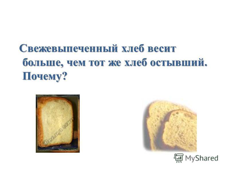 Свежевыпеченный хлеб весит больше, чем тот же хлеб остывший. Почему?