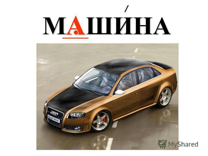 А М. ШИНА