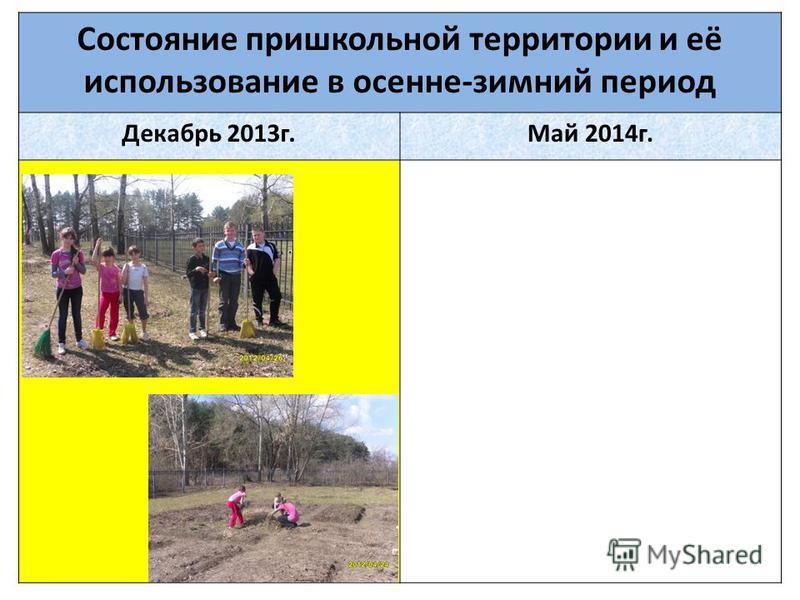 Состояние пришкольной территории и её использование в осенне-зимний период Декабрь 2013 г.Май 2014 г.
