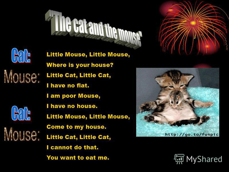 Little Mouse, Where is your house? Little Cat, I have no flat. I am poor Mouse, I have no house. Little Mouse, Come to my house. Little Cat, I cannot do that. You want to eat me.