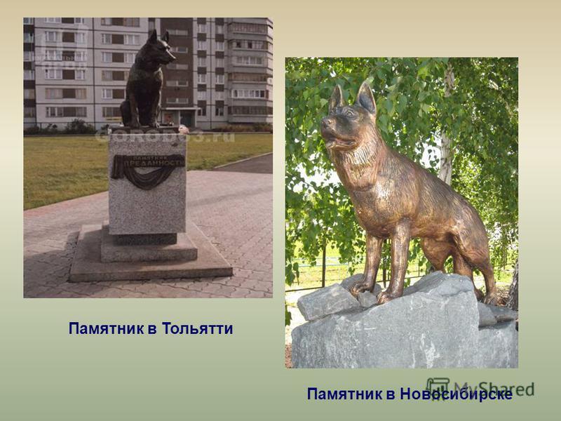 Памятник в Тольятти Памятник в Новосибирске
