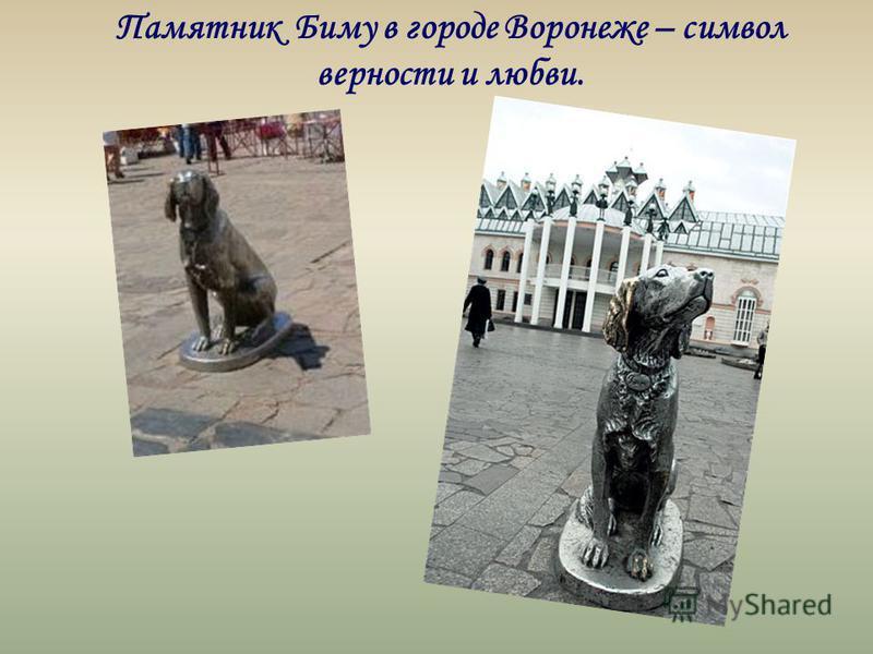 Памятник Биму в городе Воронеже – символ верности и любви.