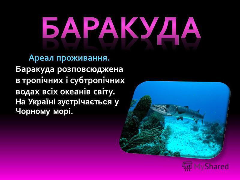 Ареал проживання. Баракуда розповсюджена в тропічних і субтропічних водах всіх океанів світу. На Україні зустрічається у Чорному морі.