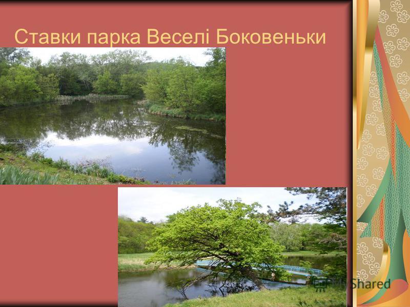 Ставки парка Веселі Боковеньки