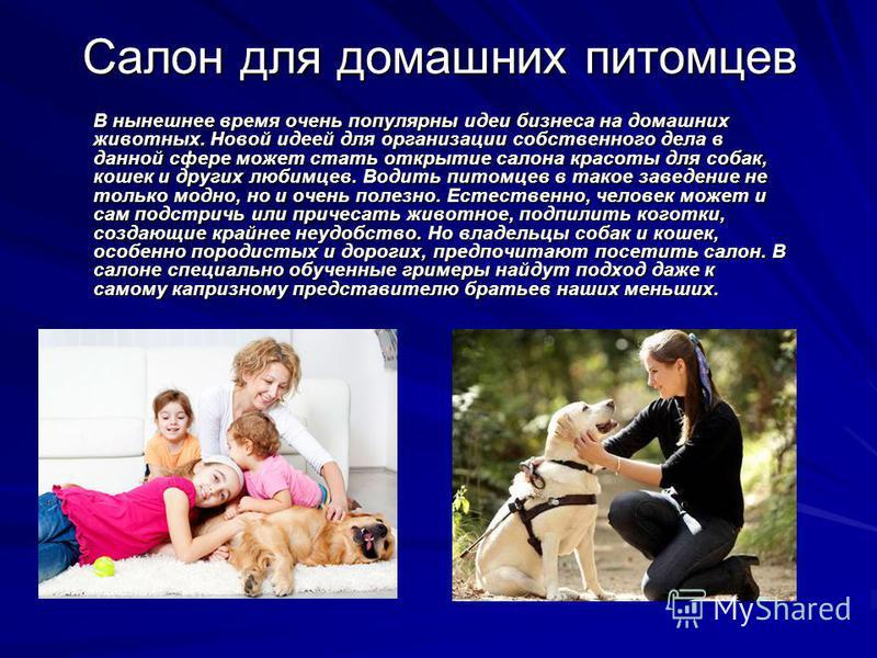 Салон для домашних питомцев В нынешнее время очень популярны идеи бизнеса на домашних животных. Новой идеей для организации собственного дела в данной сфере может стать открытие салона красоты для собак, кошек и других любимцев. Водить питомцев в так
