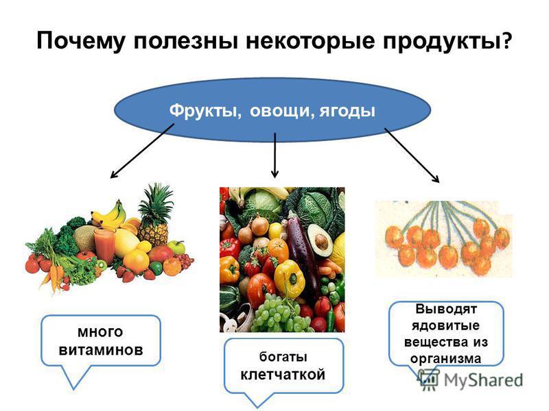 Почему полезны некоторые продукты ? Фрукты, овощи, ягоды много витаминов богаты клетчаткой Выводят ядовитые вещества из организма