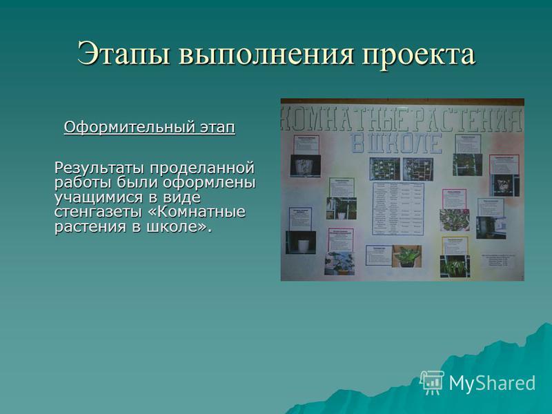 Этапы выполнения проекта Оформительный этап Результаты проделанной работы были оформлены учащимися в виде стенгазеты «Комнатные растения в школе».